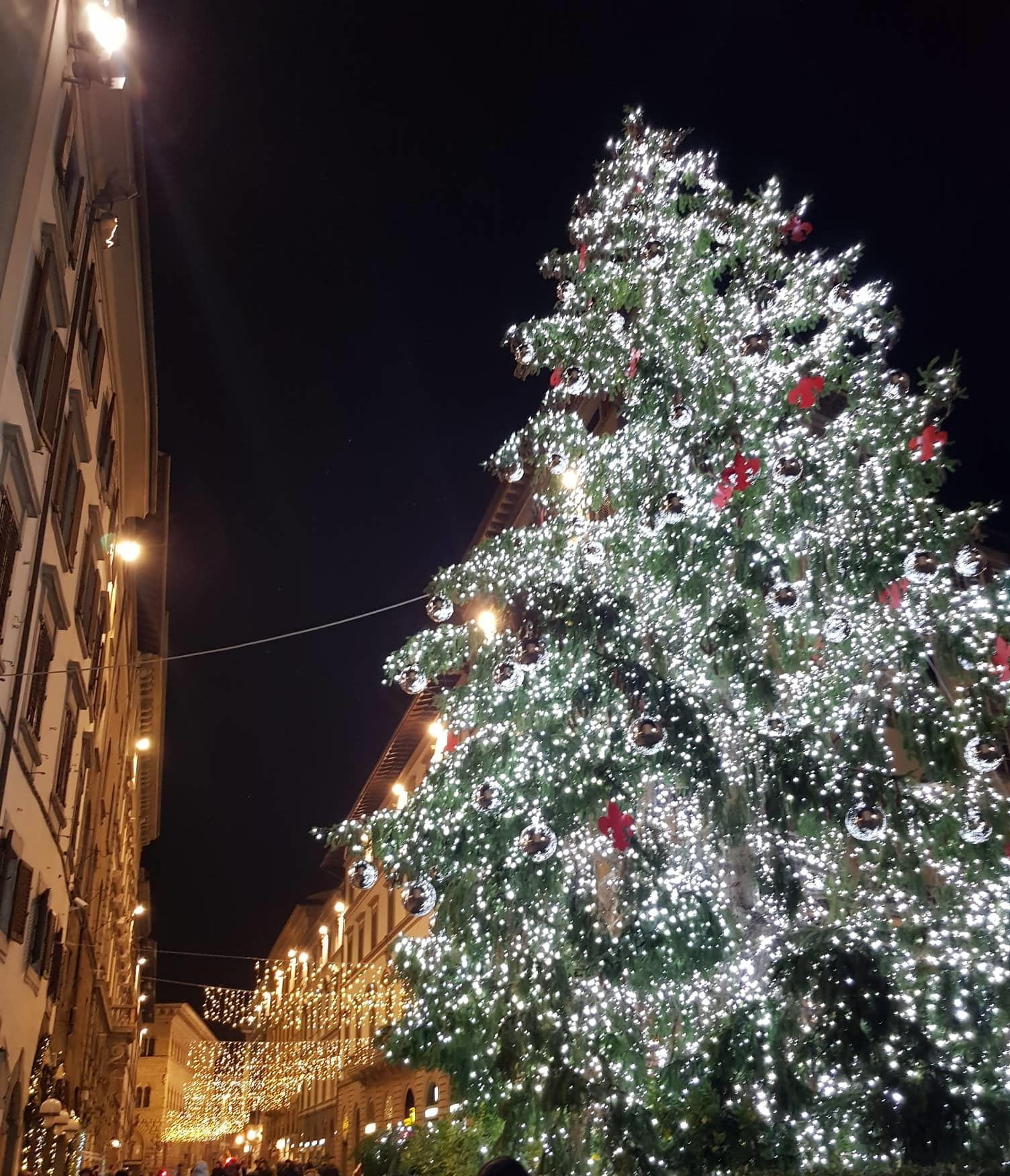 Albero-Natale-Firenze